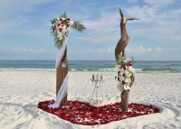 driftwood arbor, destin Florida, beach wedding, barefoot weddings
